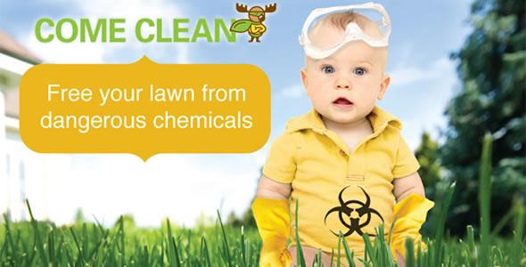 Organic Lawn Treatment Services by Clean Air Lawn Care